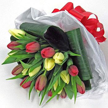 red-yellow-tulip-handtie-flowers-350
