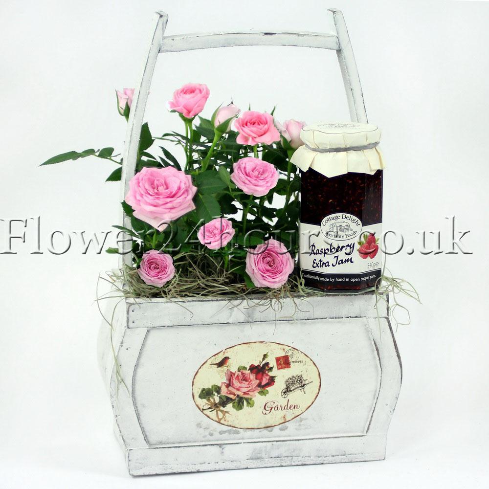 Raspberry Roses_resize