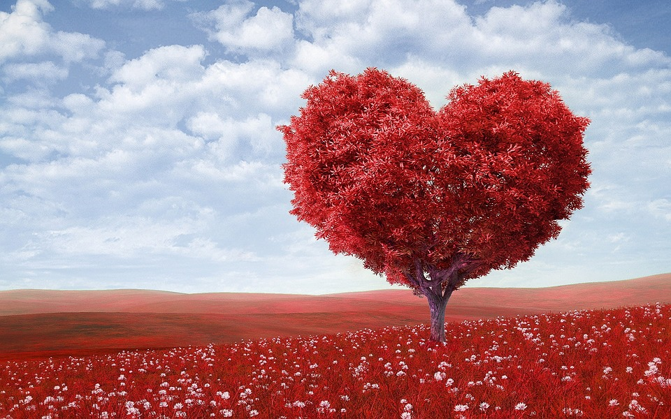 valentines- day-flower-arrangements-ideas-from-london-florist
