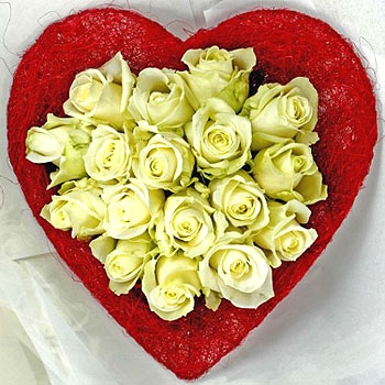 Heart and Home roses