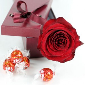 sweet-love-red-rose