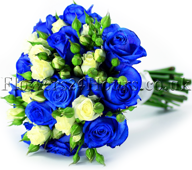Blue roses florist tips by flower delivery London same day company. Flowers delivery. Flowers london and the UK by one of the most popular London florists. Buy flowers online and send flowers with Flowers24hours flower shop. Order flowers same day for same day flower delivery and flowers online for next day flower delievery with flower and gift delivery service Flowers24hours.