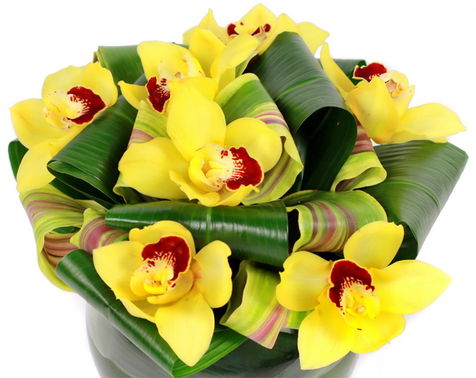 Flower delivery. Flowers and happines. Florist tips by flower delivery London same day company. Flowers delivery. Flowers london and the UK by one of the most popular London florists. Buy flowers online and send flowers with Flowers24hours flower shop. Order flowers same day for same day flower delivery and flowers online for next day flower delievery with flower and gift delivery service Flowers24hours.