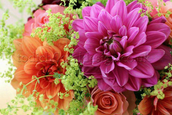 Flower delivery. Flowers and happines. Florist tips by flower delivery London same day company. Flowers delivery. Flowers london and the UK by one of the most popular London florists. Buy flowers online and send flowers with Flowers24hours