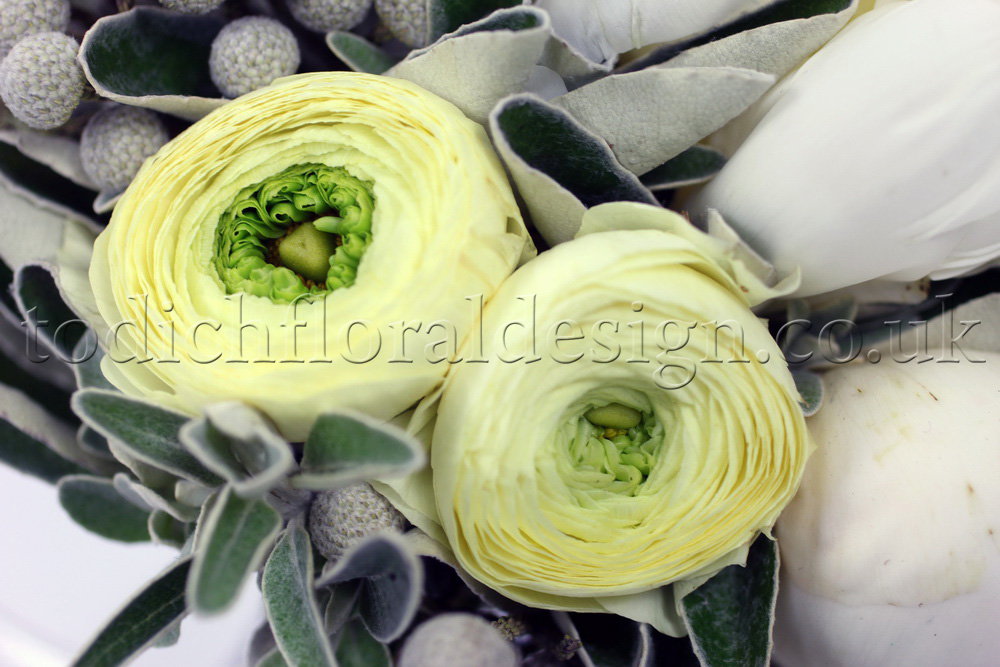 Ranunculus flower delivery UK - sameday flowers london - send flowers London
