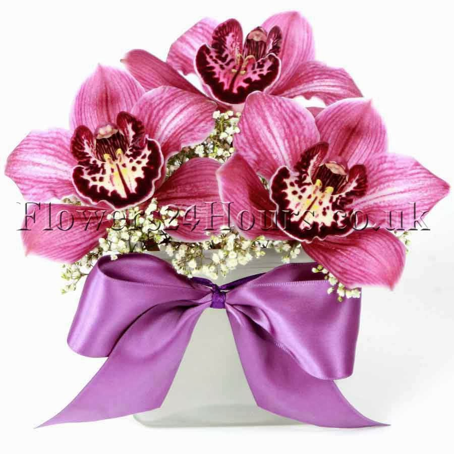 orchids for valentines day flowers orchids same day london delivery and next day orchids delivery uk