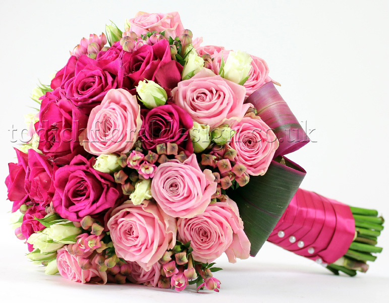 pink roses delivery same day delivery flowers
