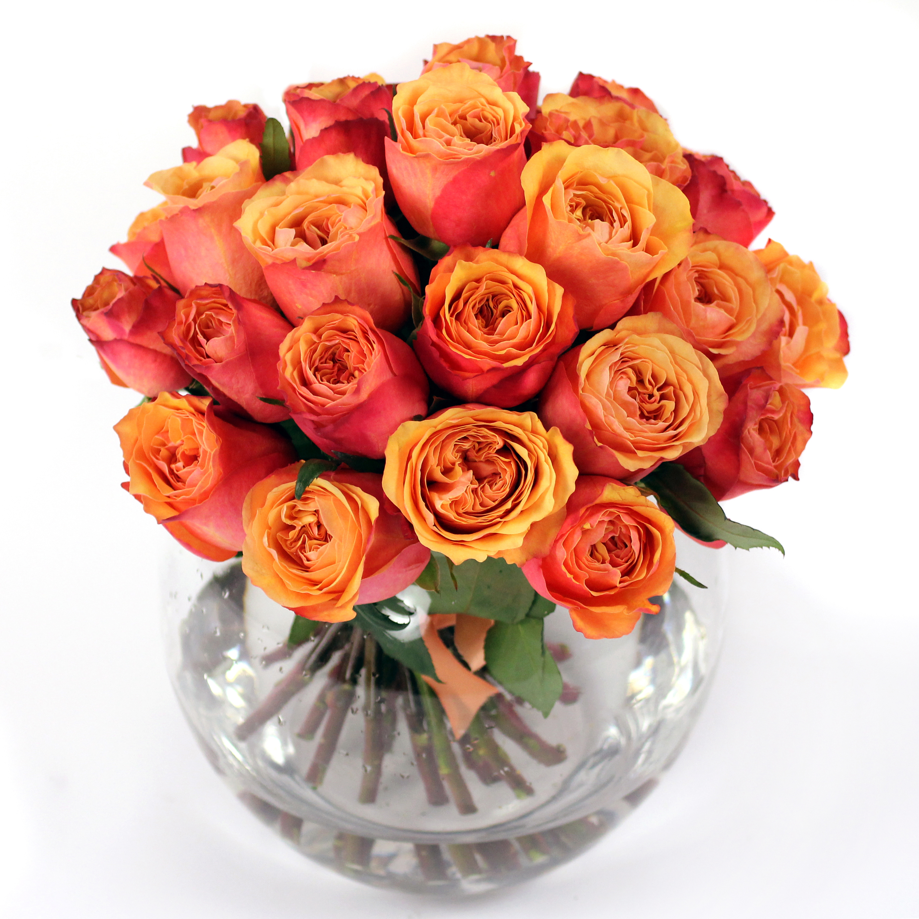 Valentine s day flowers fifty shades of rose for What color is the friendship rose