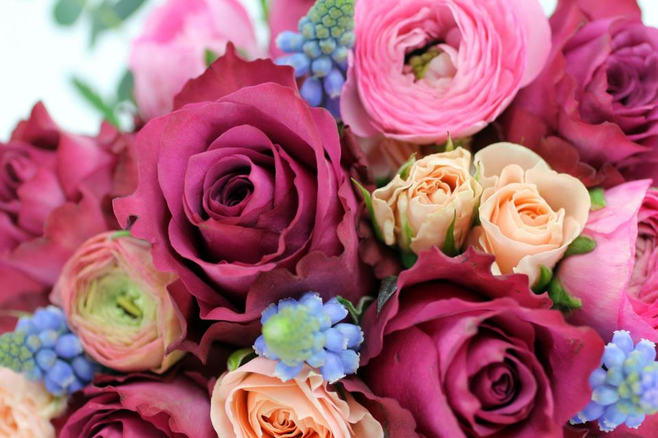 White Roses With Pink Tips Bouquet