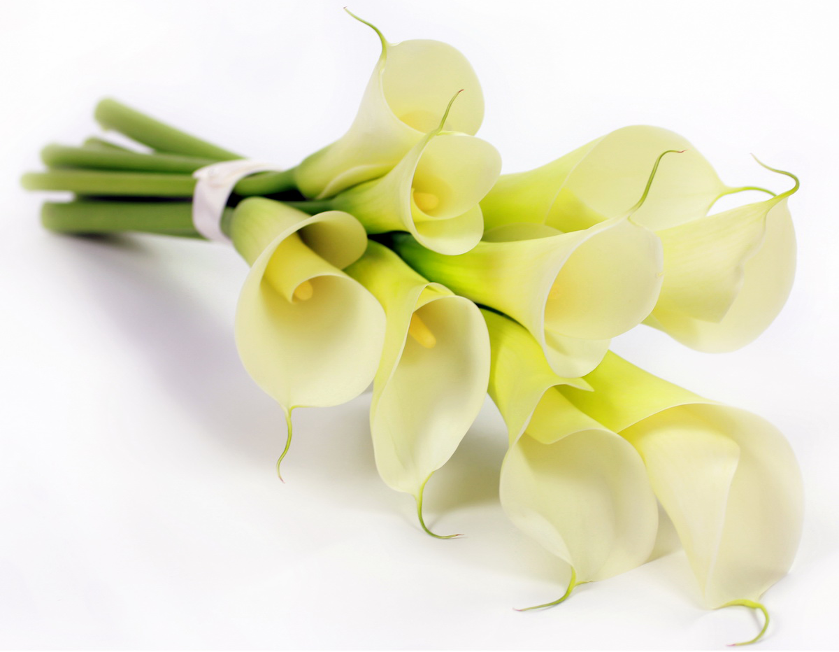 Funeral flowers meaning funeral flowers delivery london lilies for purity and tranquility izmirmasajfo