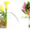 office flowers and office flower arrangement designs