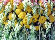 fresh-flowers-cutting-flower-delivery-london-flower-delivery-uk