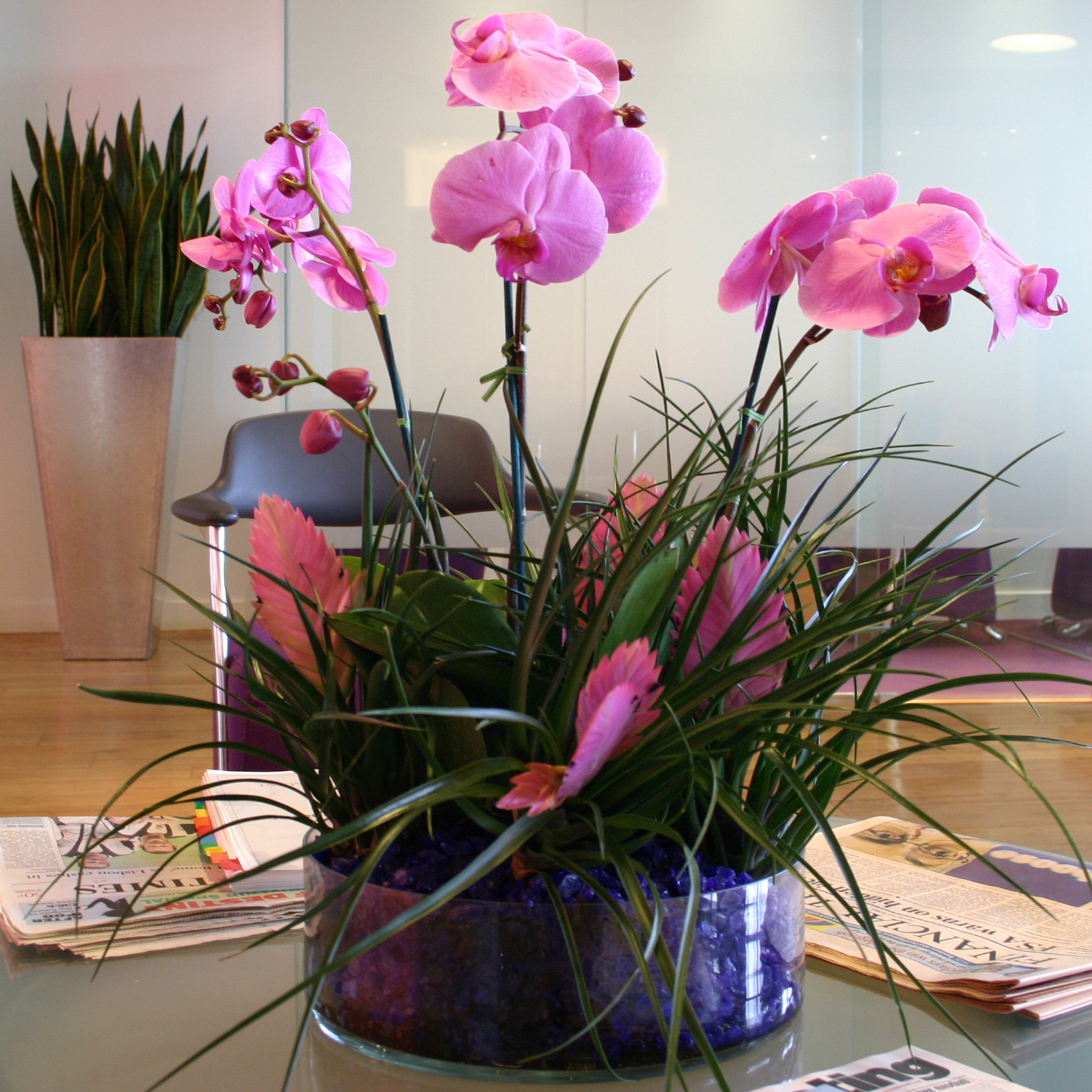 Indoor flowering plants the easiest flowers to grow for Flowering plants for indoors