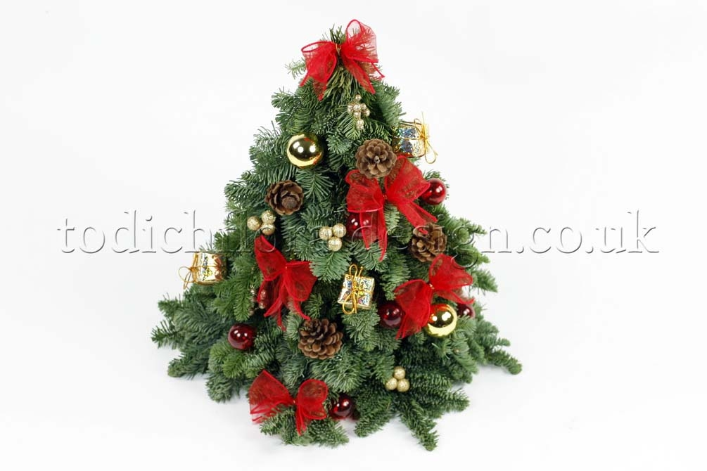 Find Your Last Minute Holiday Gifts: Christmas Flower