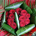 11 Best Red Roses