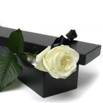 magic-in-a-box-florist-delivery-london
