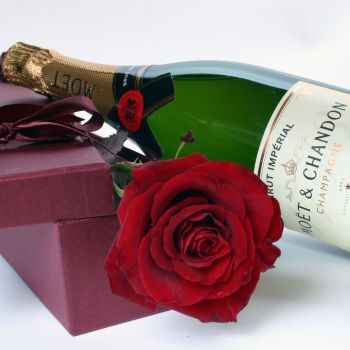 Boxed Red Rose & Moet & Chandon