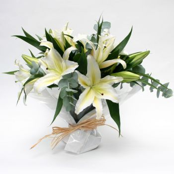 snow-white-lilies-flower-delivery-london-uk