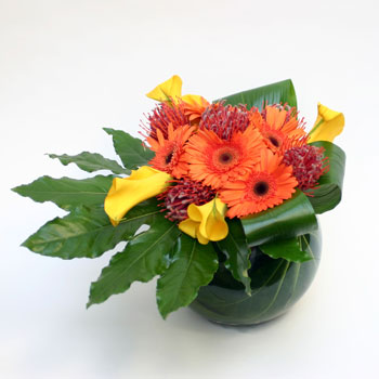dreamtime-in-oz-online-flower-delivery