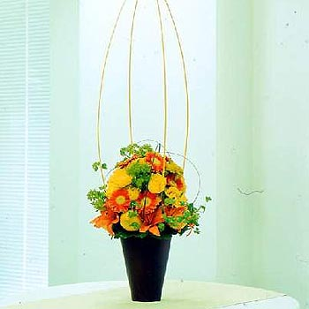 yellow-and-orange-flower-arrangement-delivered-flowers-uk