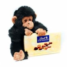 Chocolate Chimp