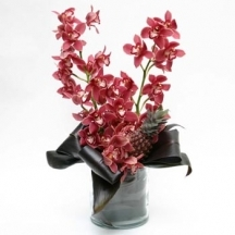 Splendour Orchid Arrangement